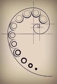 Fibonacci Tattoo on Pinterest | Nautilus Tattoo, Architecture ...