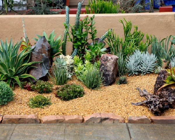 Decorative Succulents Garden Backyard Patio Ideas - Patio Design ...
