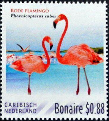 Stamp: Pink flamingo (Caribbean Netherlands) (Bonaire) Col:BQ-BO 2016-01