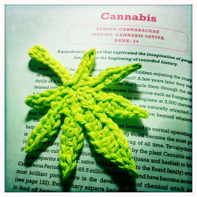1000 Images About Cannabis Crafts On Pinterest Cannabis