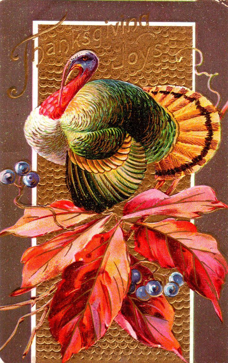 74 Best Thanksgiving Images On Pinterest