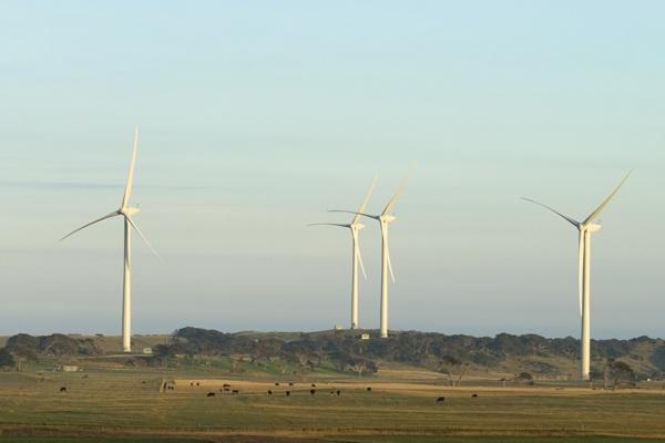 Wind farm - Cape Bridgewater, Victoria  #renewable #energy