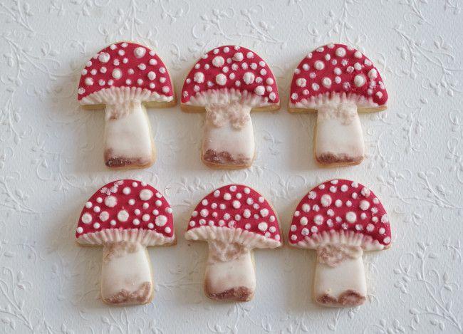 fall mushrooms, by doctorcookies