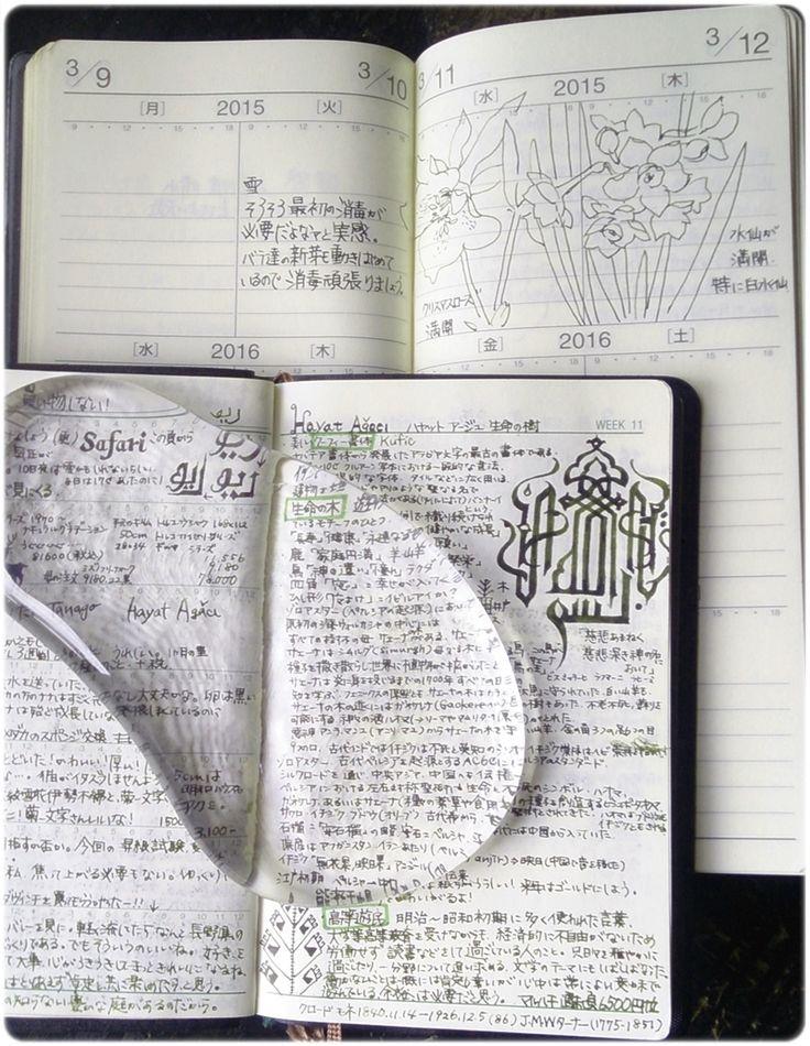 見返しに絵を書き写していますイメージ 3