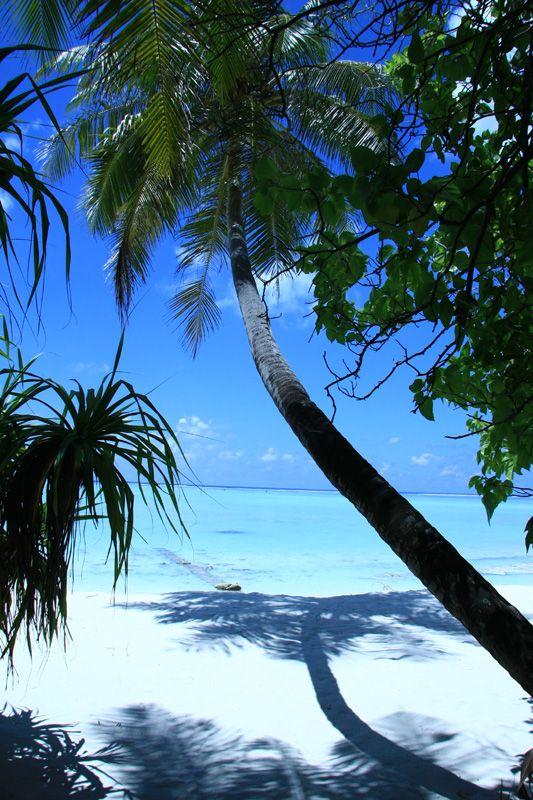 Sun Island, Maldives Copyright: Patrice Moreau