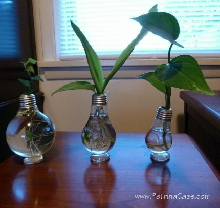 17 Best images about Crafts-Lightbulb Crafts on Pinterest | Light ...:17 Best images about Crafts-Lightbulb Crafts on Pinterest | Light bulb lamp,  Ornaments and Oil lamps,Lighting