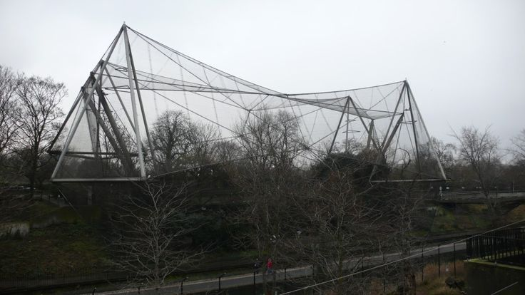 The aviary at London Zoo - Cedric Price Design is a life style. http://monarchyco.com/