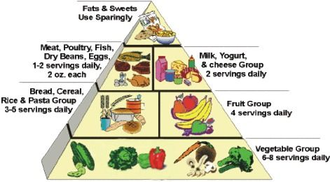 Nutrisystem calories per meal recommended books for high school