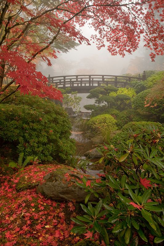 Japanese Garden In Portland Oregon Photographed By David