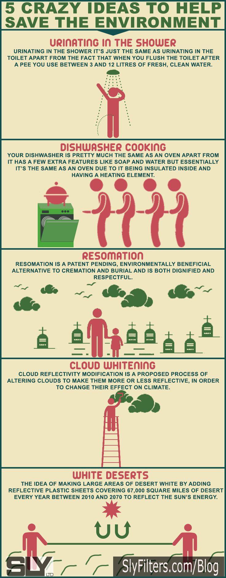 Eco friendly environment essay