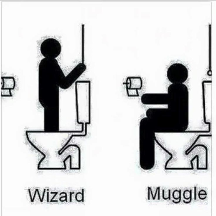 Wizard vs Muggle using the loo or toilet | Harry Potter