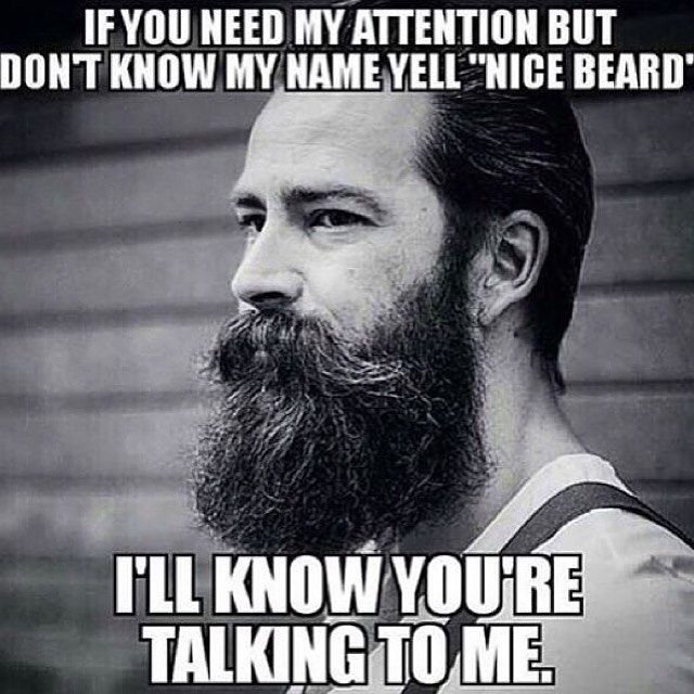 Nice Beard! | Beard Meme | Beard Humor | Bearded Men |