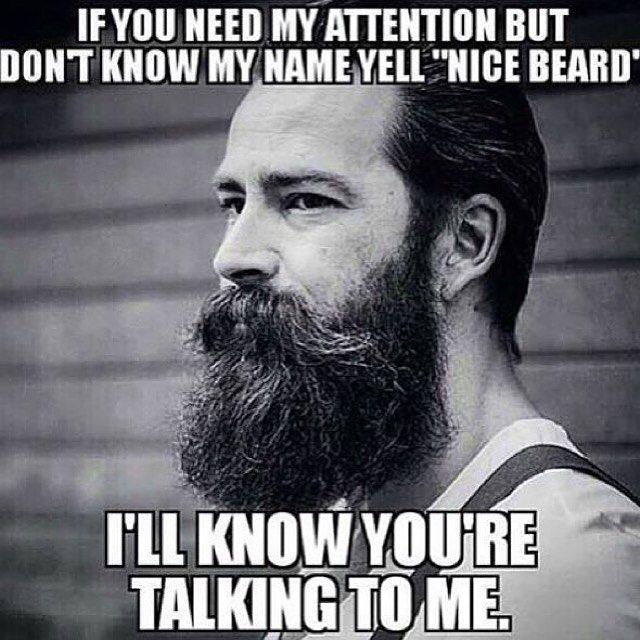 Nice Beard!   Beard Meme   Beard Humor   Bearded Men  