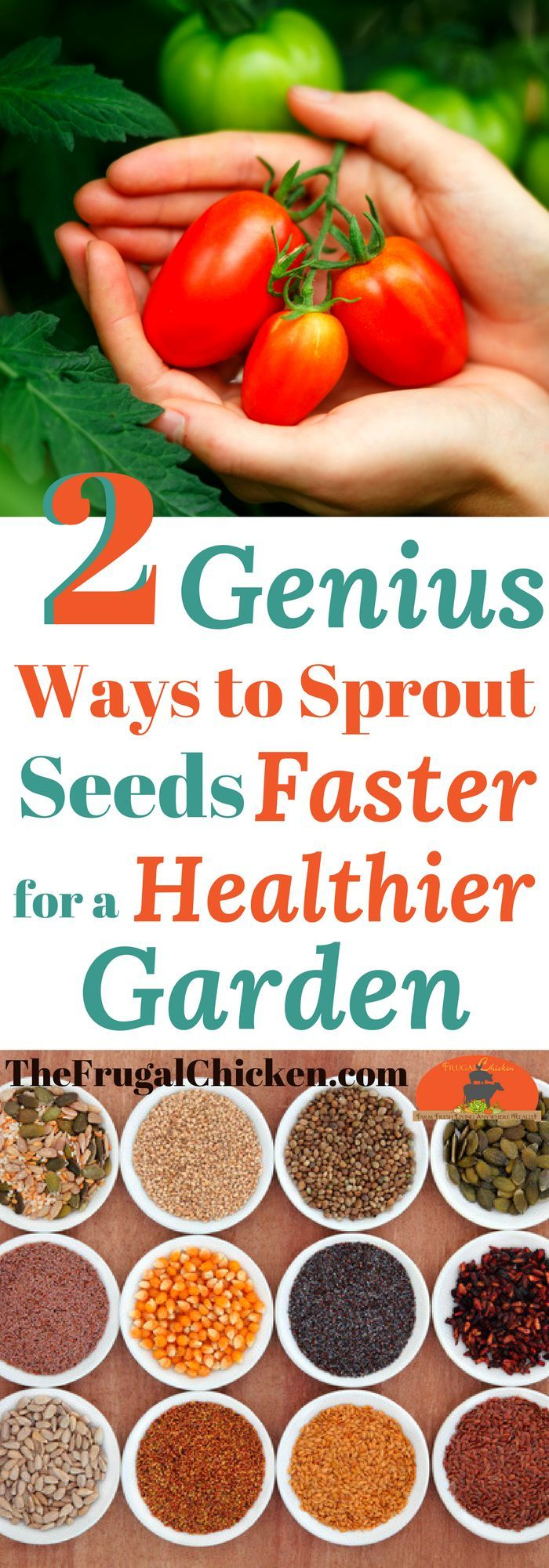Want a bigger harvest, faster and with less work? We tired these 2 genius garden hacks!
