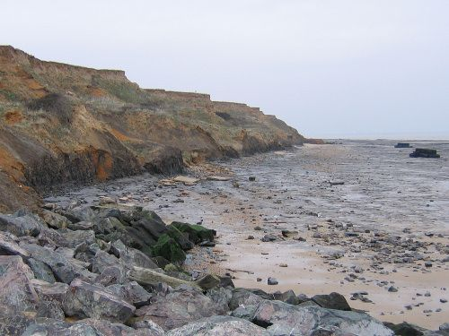 Fossil hunting in Walton-on-the-Naze Essex
