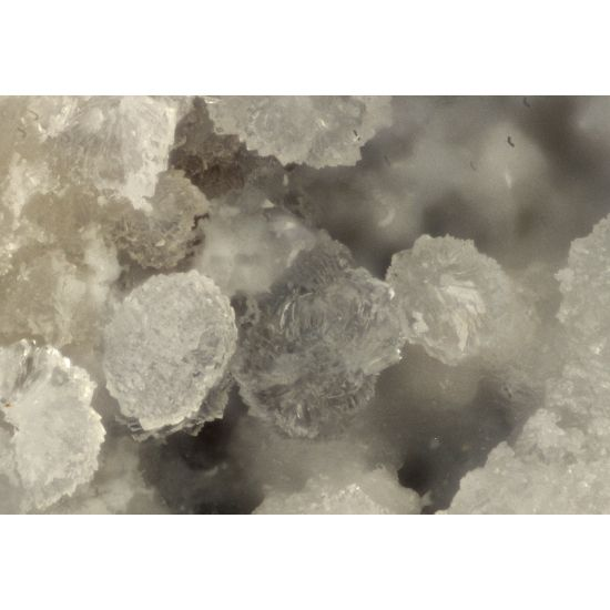 Ammonioalunite, (NH4)Al3(SO4)2(OH)6,  Pécs-Vasas Mine, Baranya County, Hungary. Translucent balls, and crystal clusters of rhombs on matrix