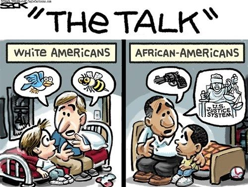 This cartoon shows the differences between what a white father feels is important to teach his child compared to what a black father needs to teach his son. This shows a clear divide between races. Whites are considered the dominant culture in America. This cartoon suggests that even the messages we tell our own children are contextual and based on stereotypes facing races.
