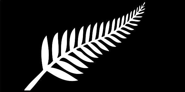 http://upload.wikimedia.org/wikipedia/commons/thumb/8/8b/NZ_fern_flag.svg/600px-NZ_fern_flag.svg.png