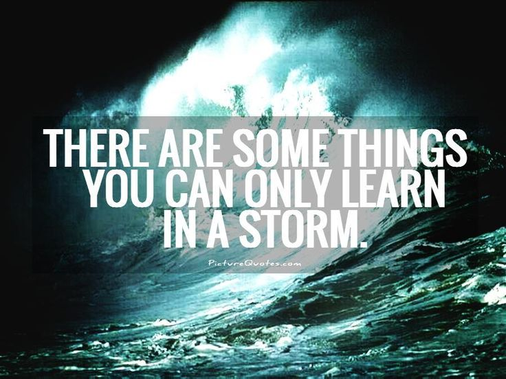 There are some things you can only learn in a storm. Picture Quotes.
