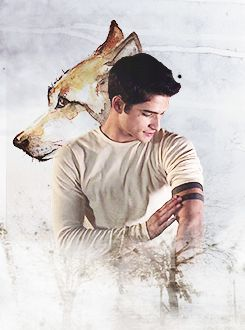 Uploaded by Oh My Teen Wolf✔️. Find images and videos about dylan o'brien, stiles and tyler posey on We Heart It - the app to get lost in what you love.