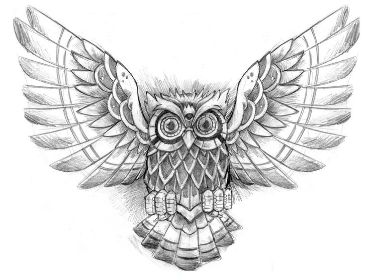 black and grey flying owl tattoo design