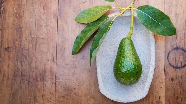 Avokádo je často mylně označováno za zeleninu. Je to ovoce, které pomáhá k hubnutí. Avokádo je bohatým zdrojem minerálních látek draslíku, mědi, magnezia, fosforu a vitaminy C, E, K, H, B3 a B5 (kyseliny pantothenové). Dužina obsahuje kyselinu olejovou, palmitovou a linolovou, což jsou kvalitní tuky. Je vhodné k hubnutí, Nastartujme s ním alkalický životní styl - http://alkalinelifestyle.cz/alkalicka-strava/