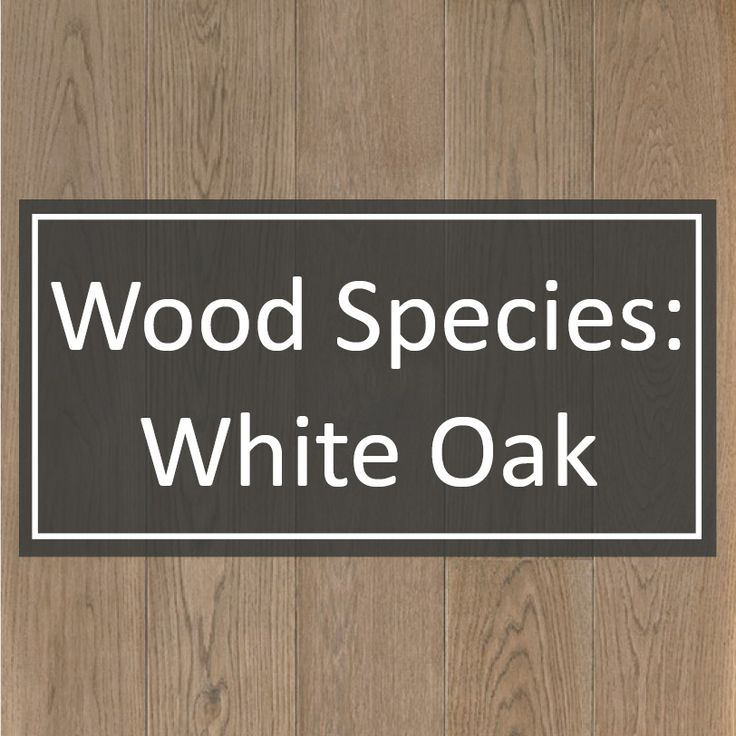 The mighty White Oak is the most sought after species of hardwood for custom wide plank flooring at Shannon & Waterman. One of the hottest trends in home design is a clean, modern space and White Oak achieves this look perfectly. Premium White Oak has less prominent graining than many other species and its mineral streaks give a more contemporary look.
