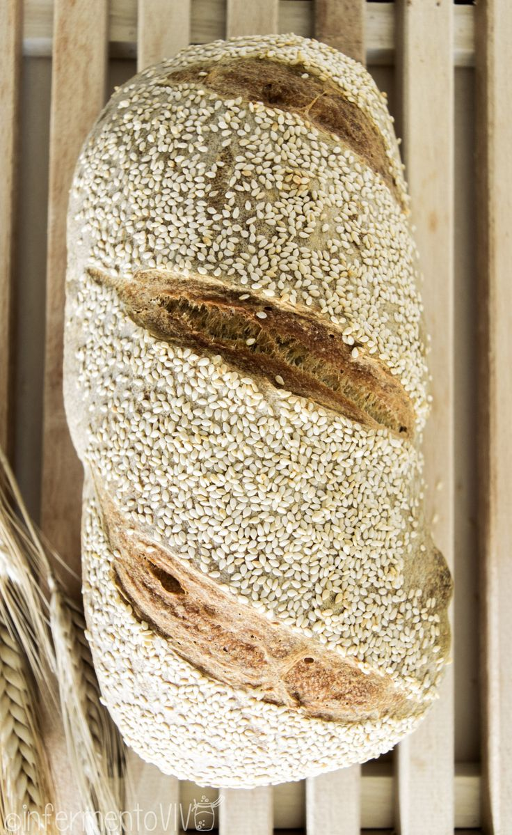 This Durum re-milled semolina pagnotta reminds of a trip to the amazing and sunny Southern Italy! A crunchy-crusted artisan bread that represents perfectly the Italian bread tradition.