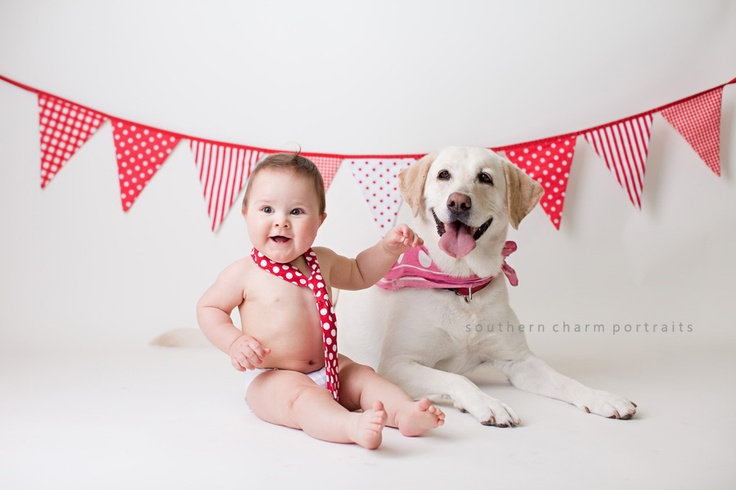 Oh my cuteness!Babies Photography, Knoxvil Baby, Knoxville Baby, Baby Poses, Childhood Photography, Knoxvil Photographers, Child Photographers, Baby Photography, Photography Ideas
