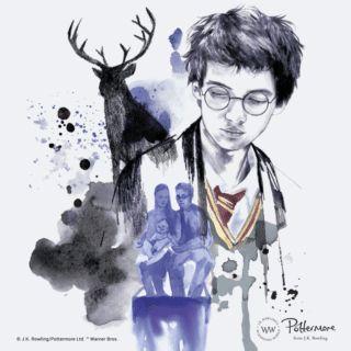A los fanes del mejor mago... Su padre: James Potter y lo principal de él
