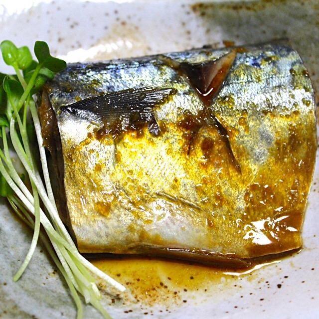 嫌いなものチャレンジ3 鯖の煮付けの時は私だけ鮭でした。 鯖の煮付けチャレンジ、食べられる。 結構、美味しいです。 又頑張ります。 - 93件のもぐもぐ - 鯖の煮付け by hiroshikimDeU
