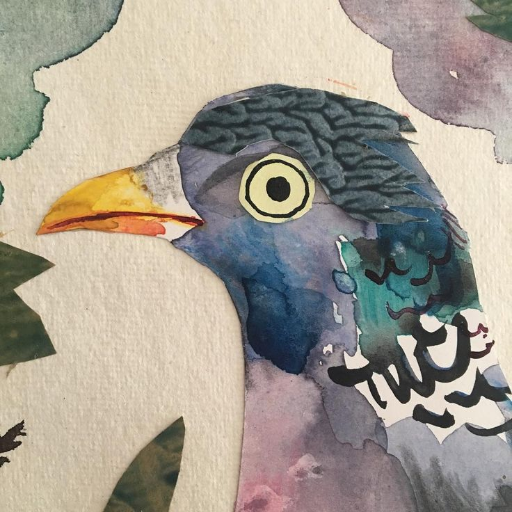 'Wood Pigeon' (detail) by Mark Hearld, 2017 (mixed media collage). A new work to be exhibited at York Open Studios (21, 22 and 23 April and 29th and 30th April 2017)