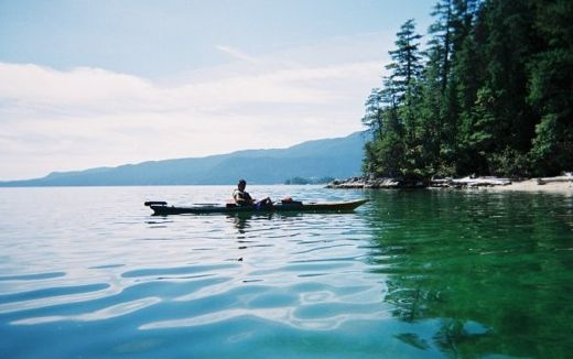 Paddling through the calm waters you will notice that each point or #inlet offers its own unique story and legend. This region is rich in #marine life and there is always a chance of seeing #seals, #otters, #sea #stars, sea #cucumbers, #eelgrass and much more. #AboriginalBC http://aboriginalbc.com/members/talaysay-tours/