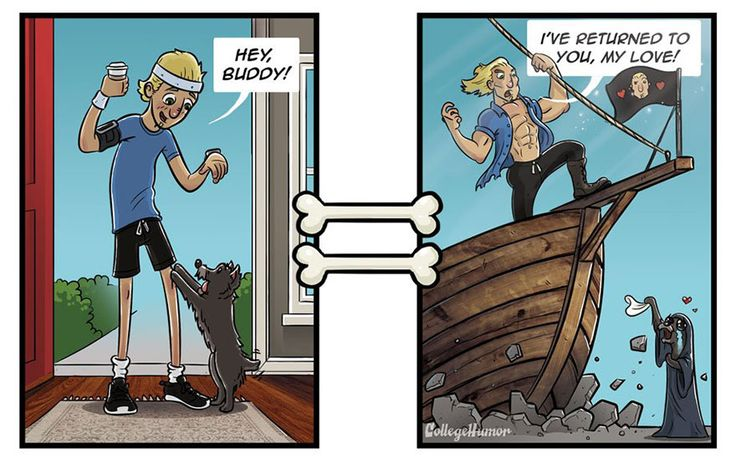How Dogs See The World In 7 Funny Illustrations