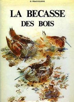 Fraguglione. La bécasse des bois (Scolopax rusticola). 1984