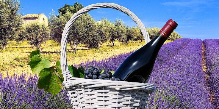 Die Provence: Mediterranter Lebensstil, Wein-, und Genussregion.