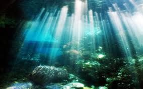 rocks under water - Google Search