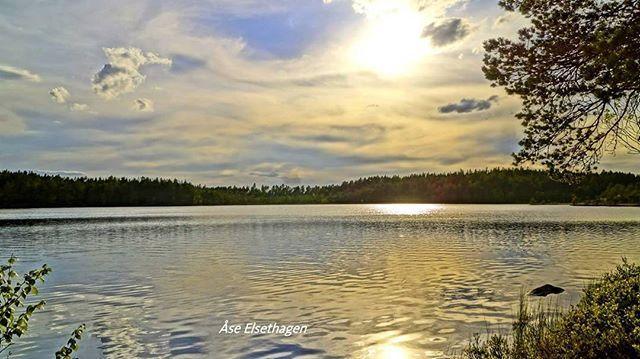 #finnskogen #follow4follow #dreamnorway #tv2storm #tv2vært #best2norway #ulbolig #visitnorway #norgerundt #eastnorway #norgesferie #nrkøstnytt #vg #friluftsliv #villmark #dnt #utno #2vær #godmorgennorge #glåmdalen #hyttelivet #fiske #fishing #hunting #åsnes