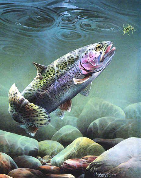 animals painting | Paintings, animal & wildlife paintings, paintings of animals ...