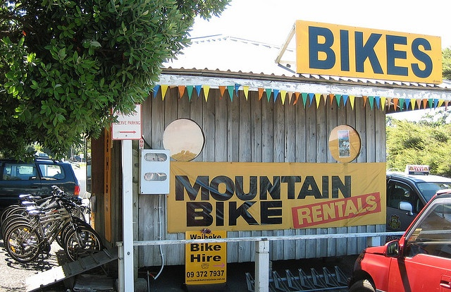 Waiheke Winery Tour on Mountain Bikes