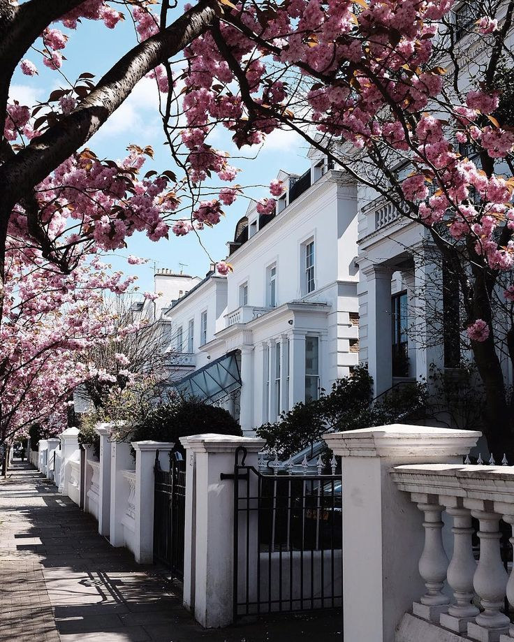 Pink alley in Notting Hill, London