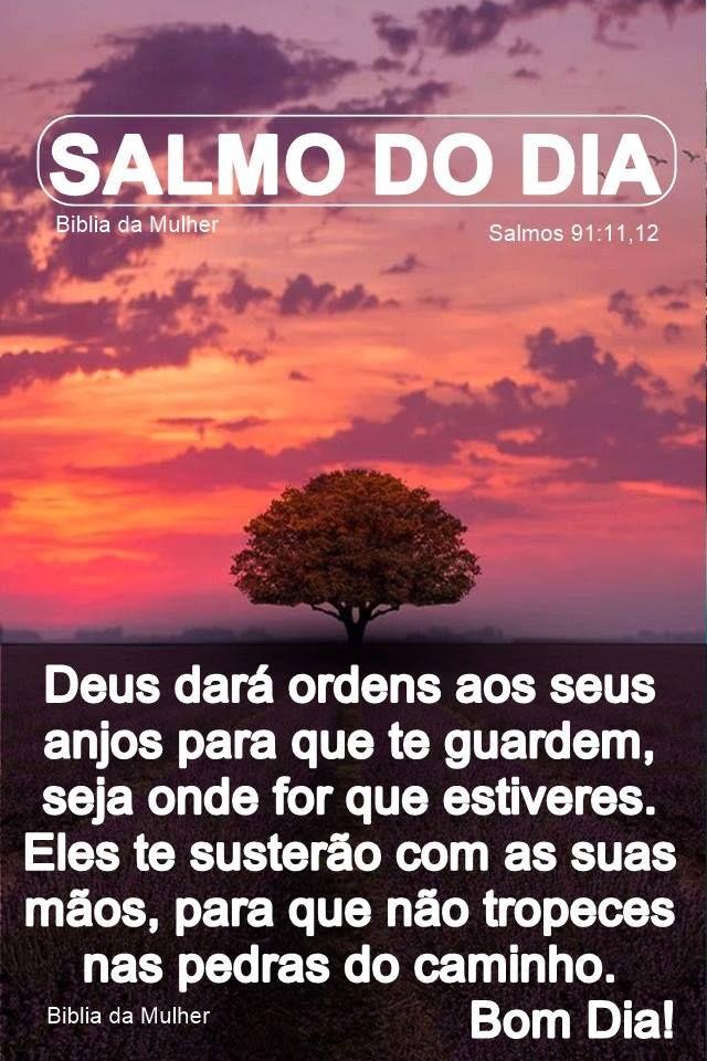 Conheca Sua Biblia De Capa A Capa Salmo Do Dia Frases De Deus