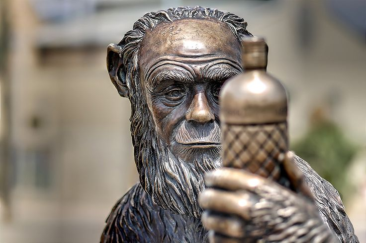 Estatua de Anís del Mono - Badalona (Spain)