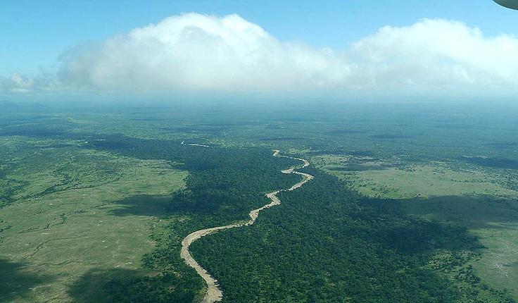 The Selous game reserve, Tanzania