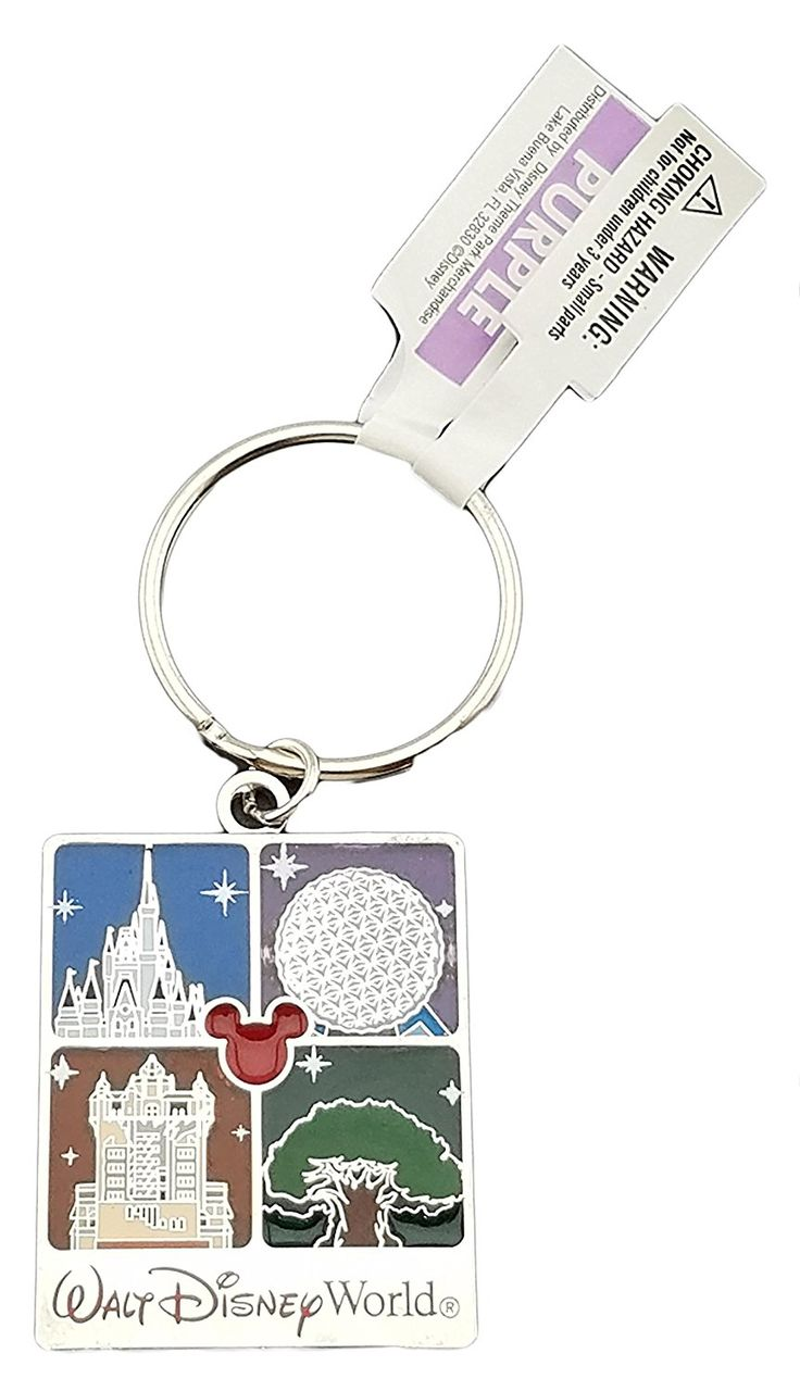 Disney Discovery- Assorted Disney Keychains