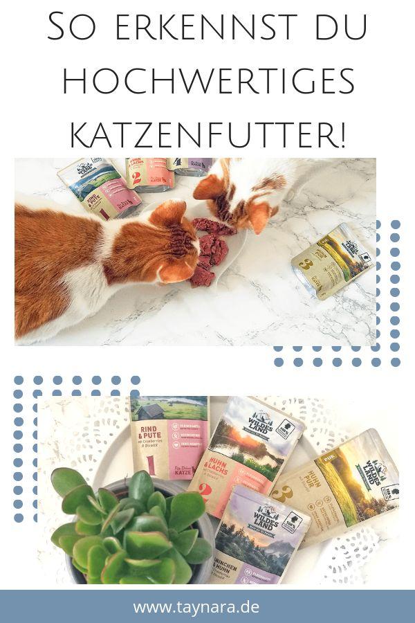 Anzeige Wildes Land Hochwertiges Katzenfutter Fur Deine