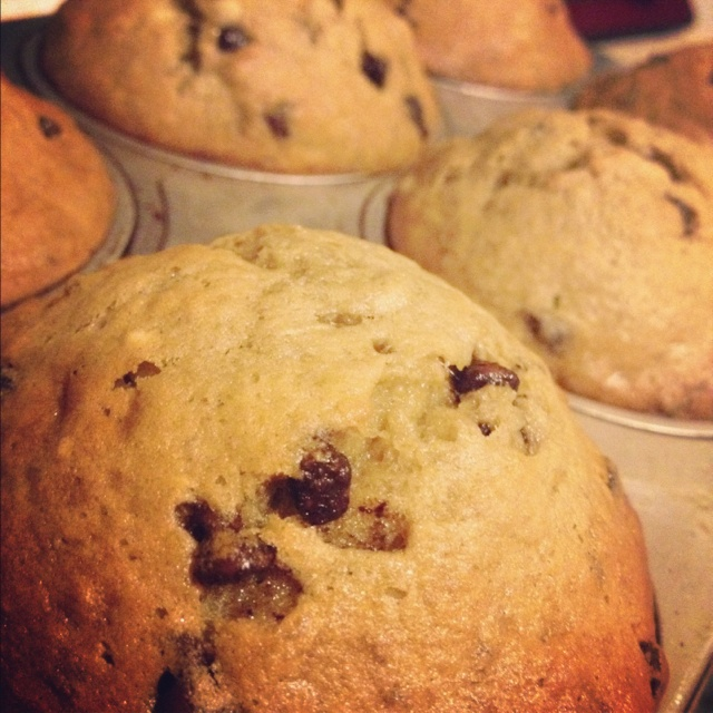 111 best tyler florence images on pinterest hands cooking recipes banana chocolate chip muffins taken from tyler florences recipe forumfinder Image collections