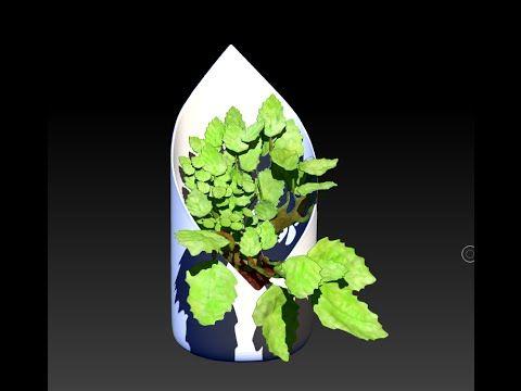 Trabajo para GREENDECO - by riujii takasu para Felix Garavito Barrera  https://www.facebook.com/greendecoplantas?fref=ts