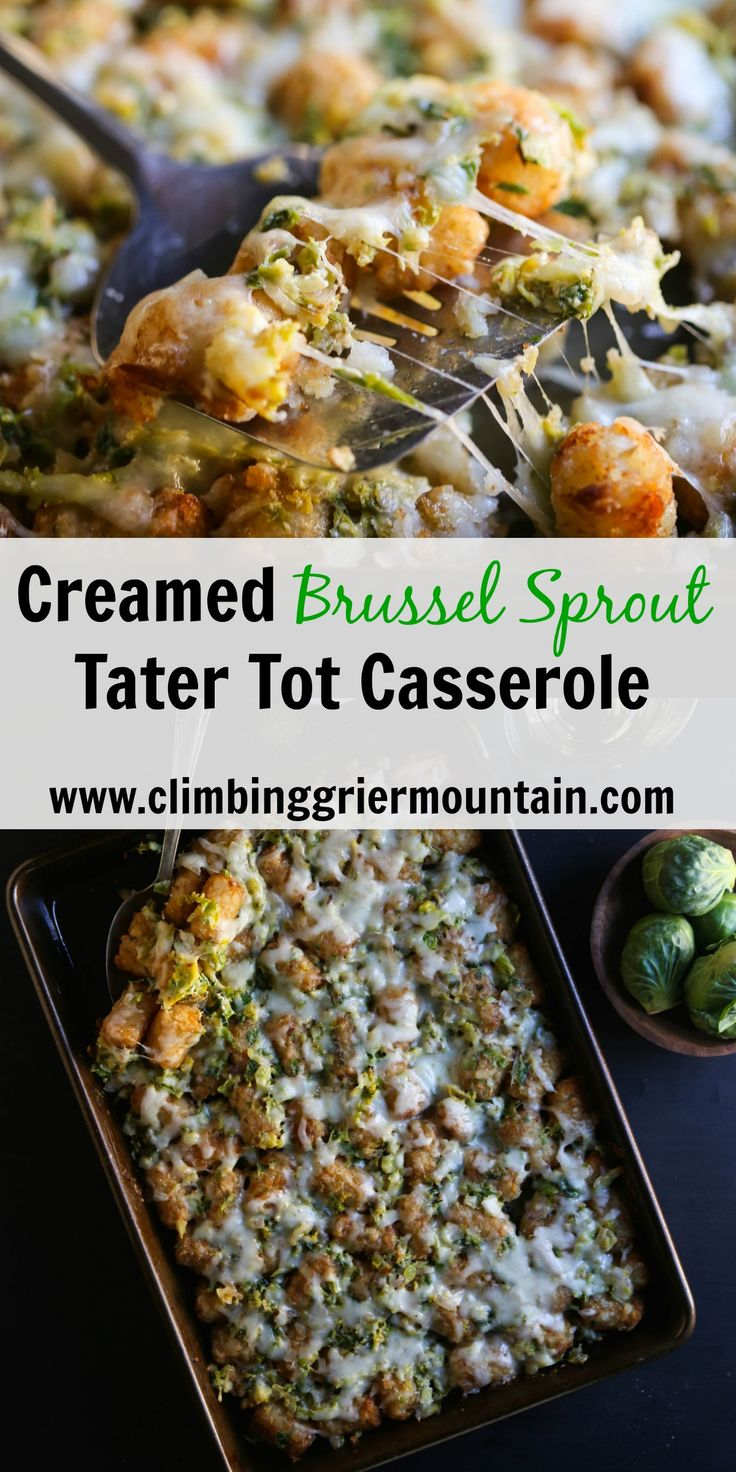 Climbing Grier Mountain creamed brussel sprout tater tot casserole - Climbing Grier Mountain