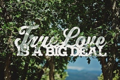 True Love IS A BIG DEAL: True Word, Weddings Signs, Weddings Ceremony Decoration, True Love, Bigday, Mr. Big, Outdoor Weddings Decoration, Big Deals, Big Day
